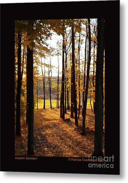 Autumn Sunrise-i Metal Print by Patricia Overmoyer