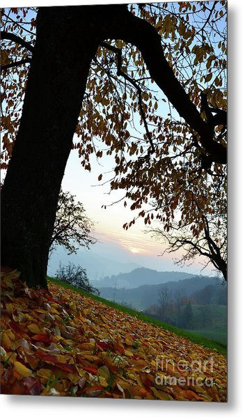 Autumn View Metal Print