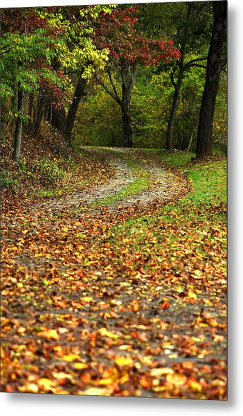 Autumn Walk In The Forest Metal Print