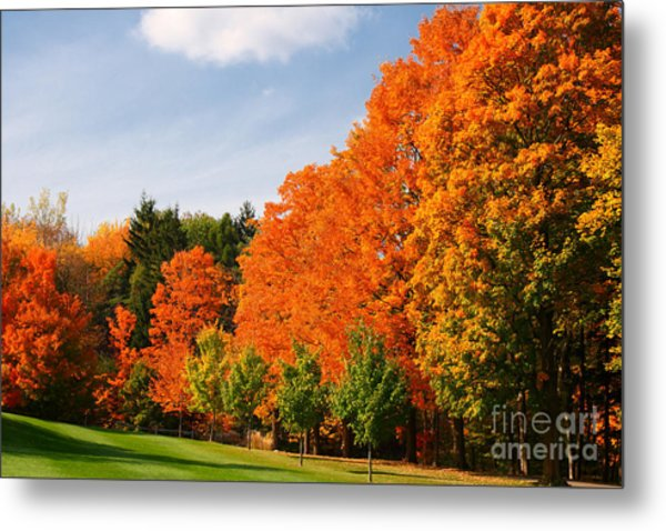 Autumn's Artwork Metal Print