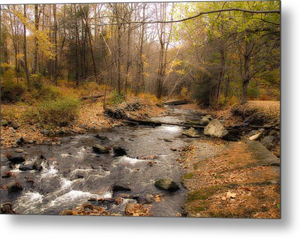 Babbling Brook In Autumn Metal Print