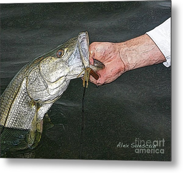 Back Bay Snook Metal Print