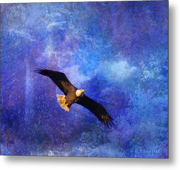 Bald Eagle Bringing A Fish Metal Print