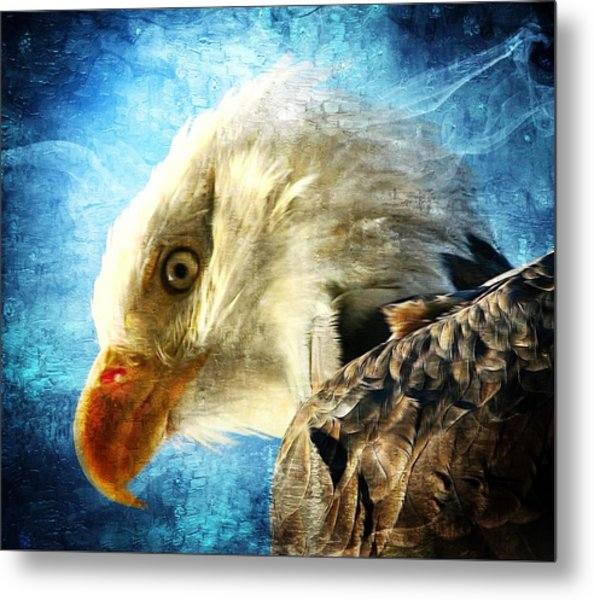 Bald Eagle Metal Print by Carrie OBrien Sibley