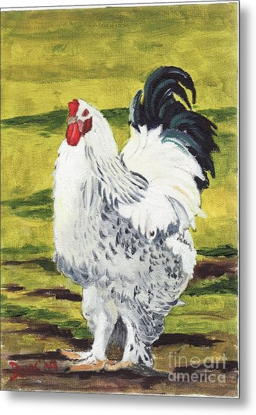 Ballymaloe Cockerel Metal Print