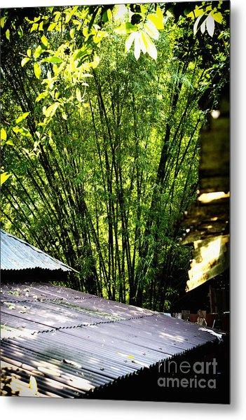 Bamboo Shade Metal Print