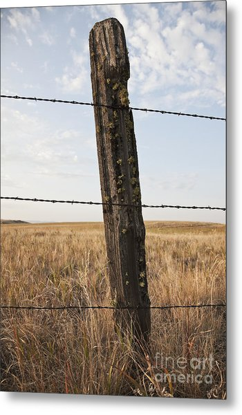 Barbed Wire Fencing And Wooden Post Metal Print by Jetta Productions, Inc