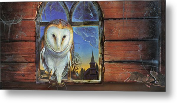 Barn Owls Finds A Home Metal Print