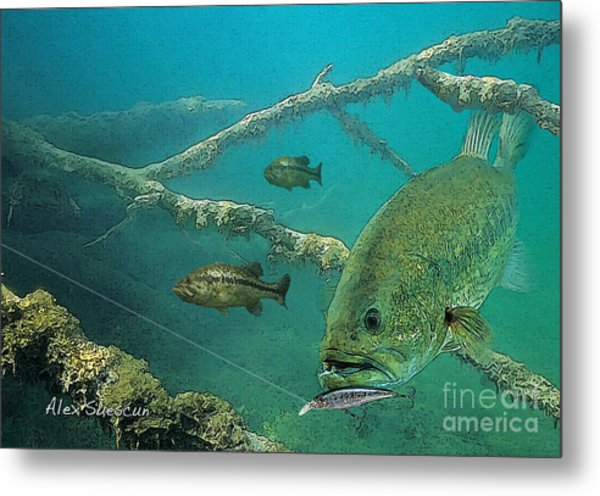 Bass Ambush Metal Print