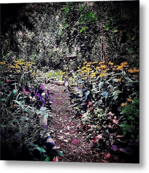 Beautiful Garden Path - New York City Metal Print