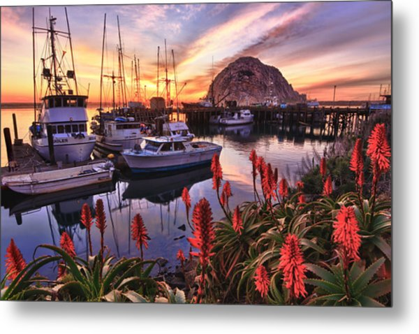 Beautiful Morro Bay Metal Print