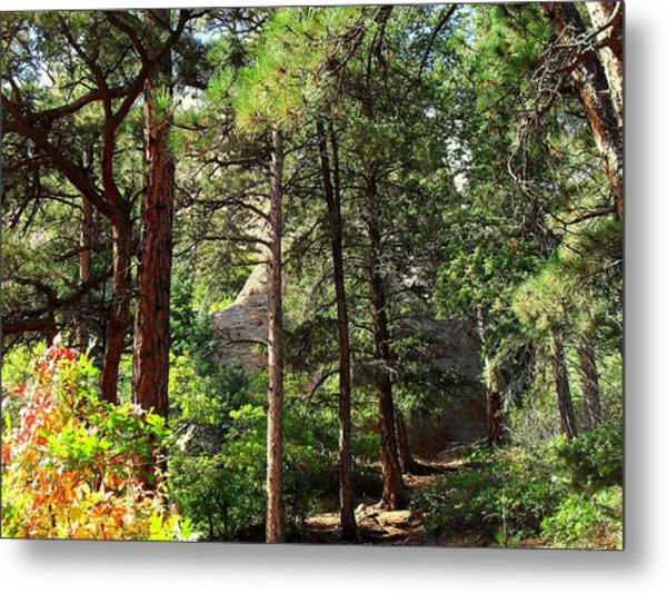 Beautiful Trail North Canyon Metal Print