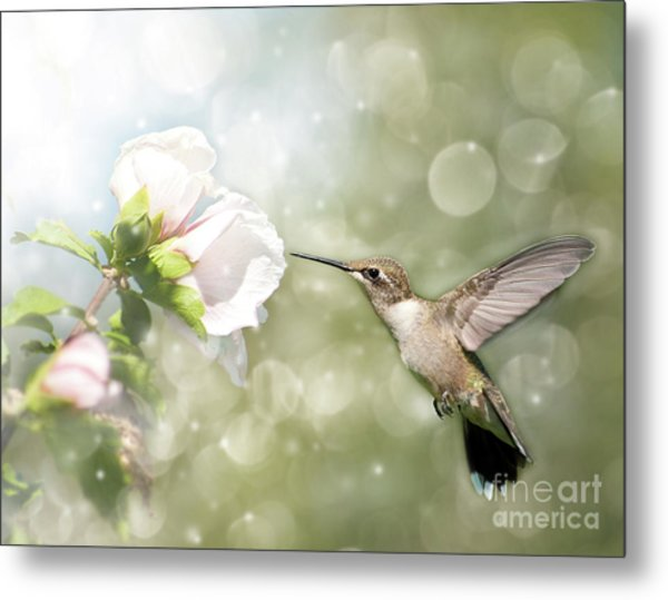 Beauty In Flight Metal Print