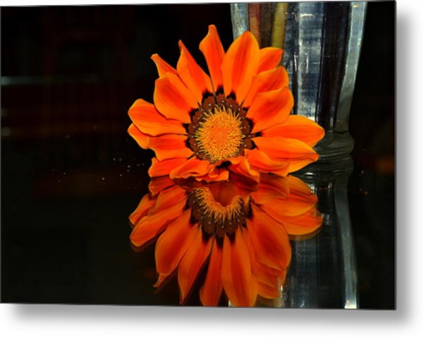 Beauty In Reflection Metal Print