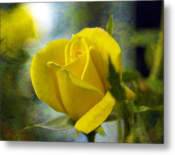 Beauty Of A Yellow Rose Metal Print by J Larry Walker