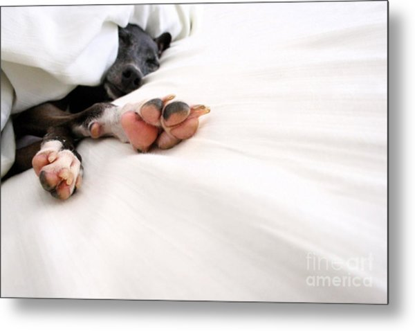 Bed Feels So Good Metal Print