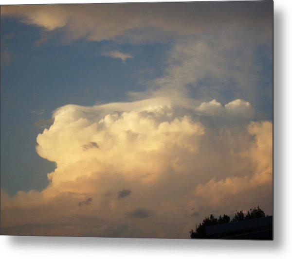 Before The Storm Metal Print by Debbie Wassmann