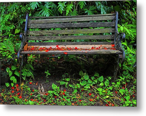 Bench And Flowers- St Lucia. Metal Print by Chester Williams