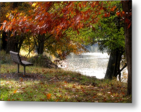 Best Seat On The Bank Metal Print by Darlene Bell