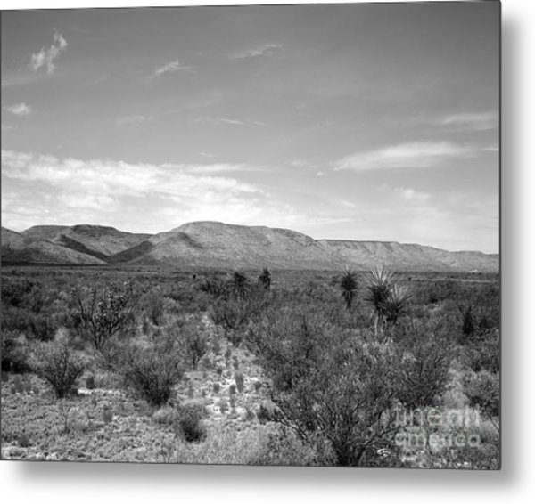 Big Bend Vista Metal Print