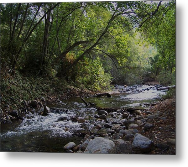 Big Sur River Metal Print