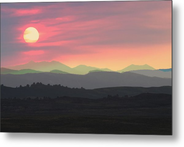 Bighorns At Sunset Metal Print