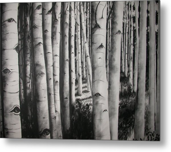 Birch Metal Print by Scott Robinson
