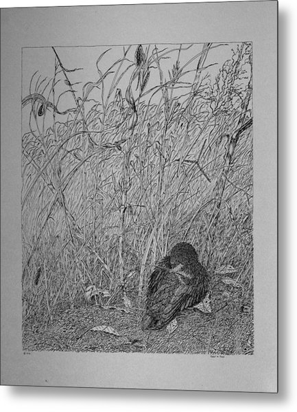 Bird In Winter Metal Print