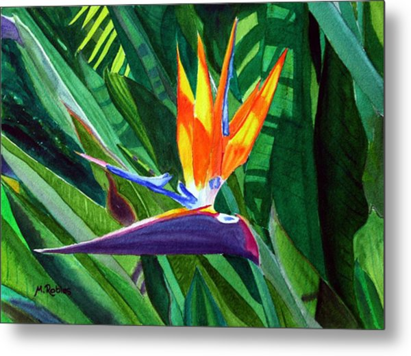 Bird-of-paradise Metal Print