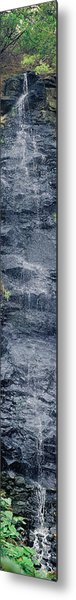 Bird Park Waterfall Metal Print by Miguel Capelo