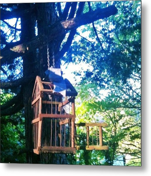 Birdcage Above My Reading Bench Metal Print
