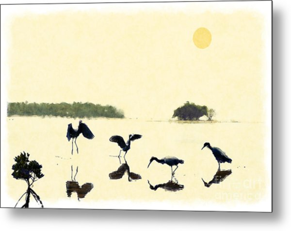 birds feeding in the Everglades Metal Print