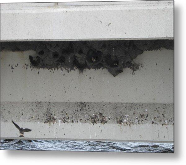 Birds Nest Under The Bridge. Metal Print
