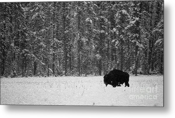 Bison In Snow Mosaic Metal Print by Barry Shaffer