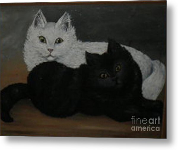 Black And White Cats Metal Print by Hilda Schreiber