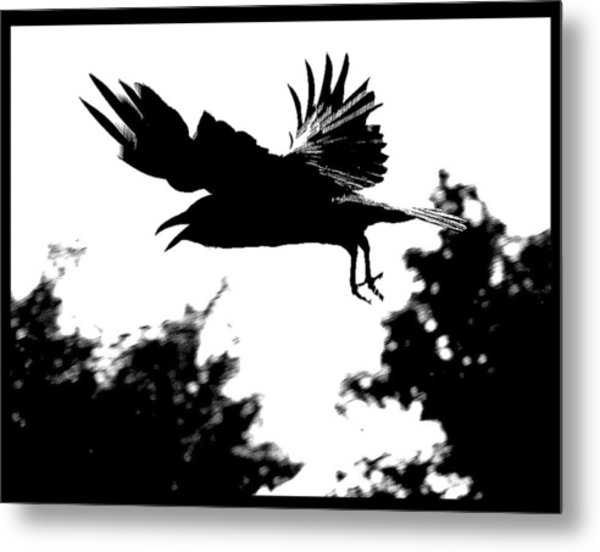Black Bird Number 2 Metal Print