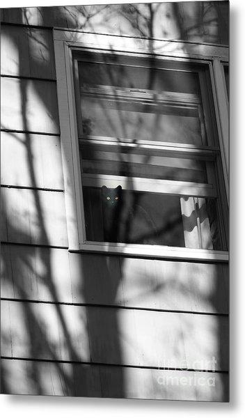 Black  Cat On A Shadowy Sill Metal Print