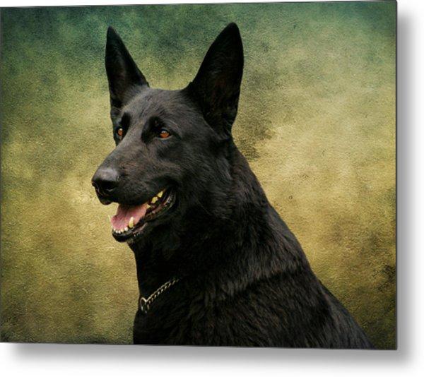 Black German Shepherd Dog IIi Metal Print