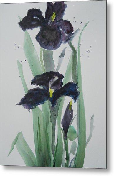 Black Iris Metal Print