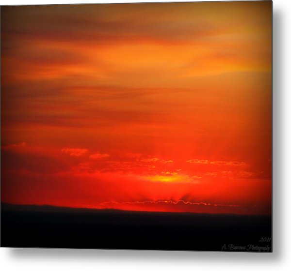 Blacks And Reds Metal Print by Aaron Burrows