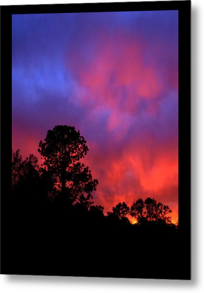 Blessings From The Sun Metal Print