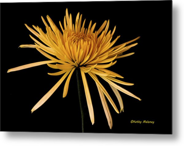 Blooming Yellow Metal Print