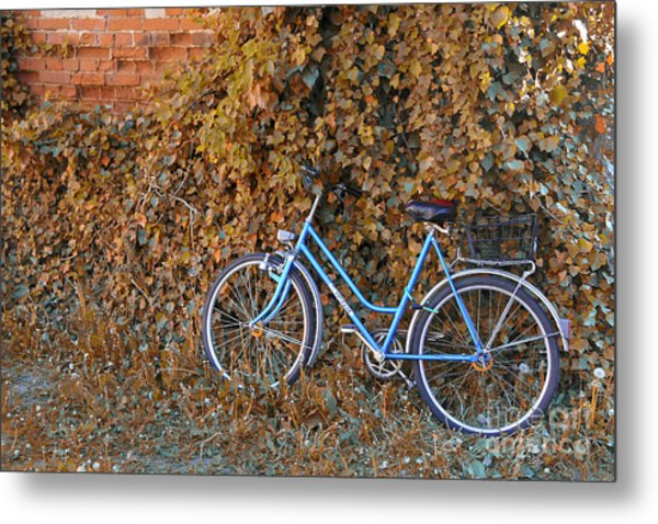 Blue Bike Metal Print