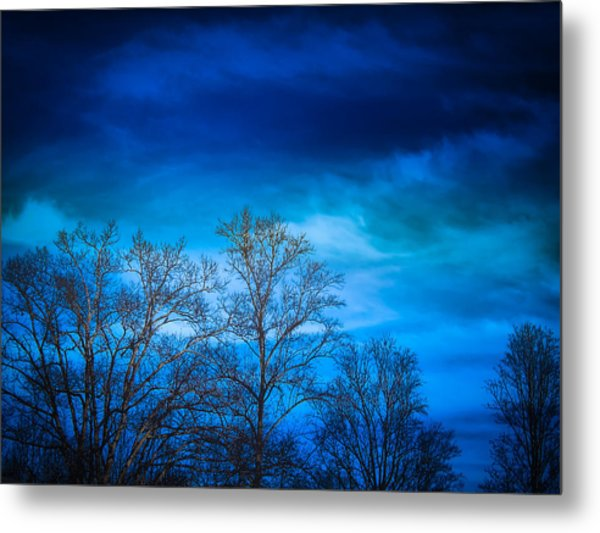 Blue Delight Metal Print by Victoria Ashley