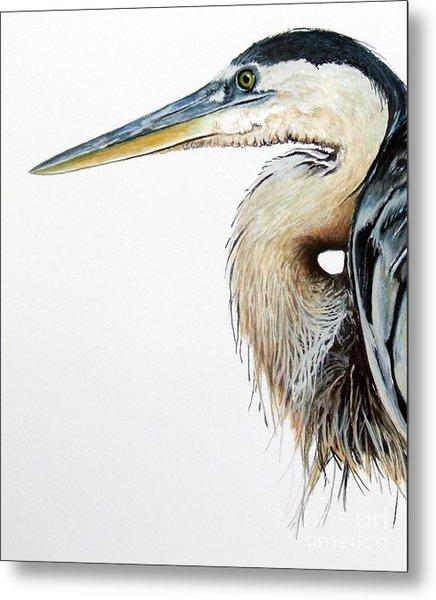 Blue Heron Study Metal Print