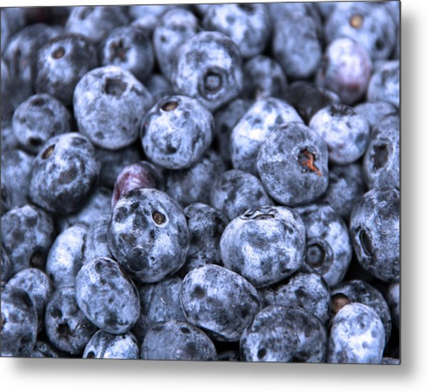 Blueberries  Metal Print by Kim French