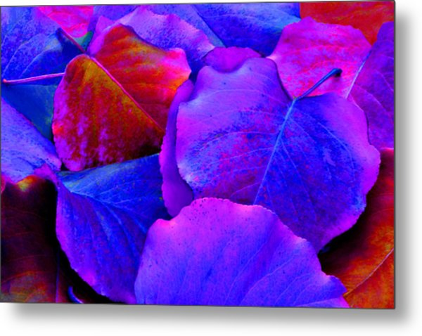 Bluish Purple And Pink Leaves Metal Print