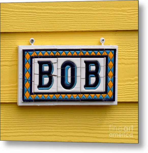 BOB Metal Print by Tanya  Searcy