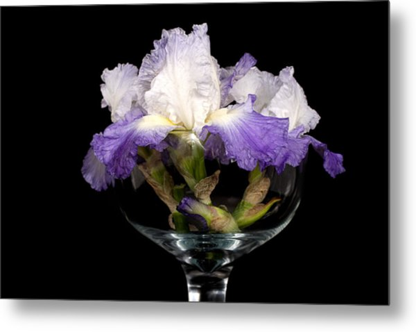 Bowl Of Iris Metal Print by Trudy Wilkerson