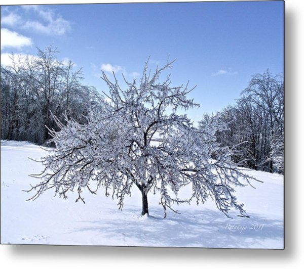Branches Of Rooted Wisdom Metal Print by Rotaunja